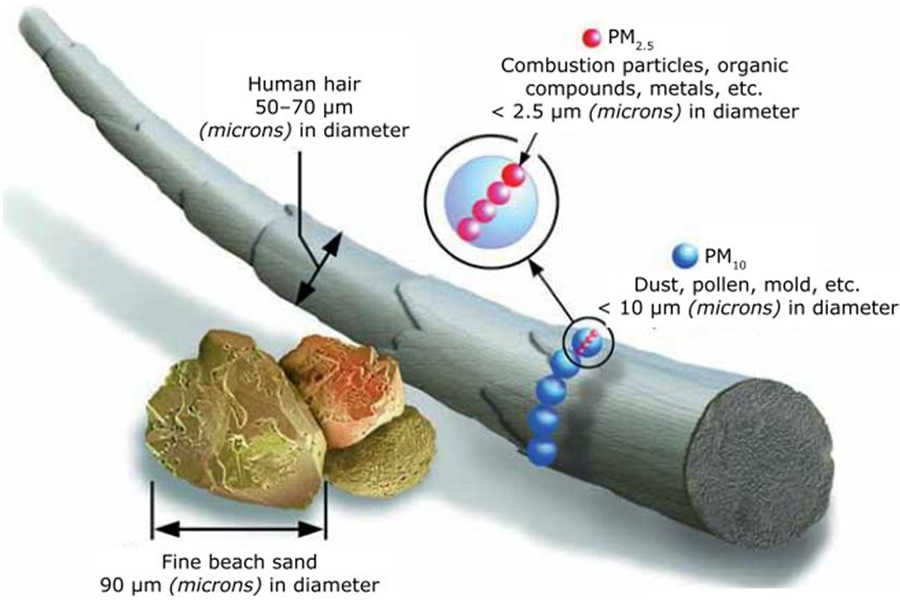 Particulate matter diagram showing sizes of PM2.5 and PM10 particle pollution released by limestone quarries similar to the proposed Vulcan Comal quarry