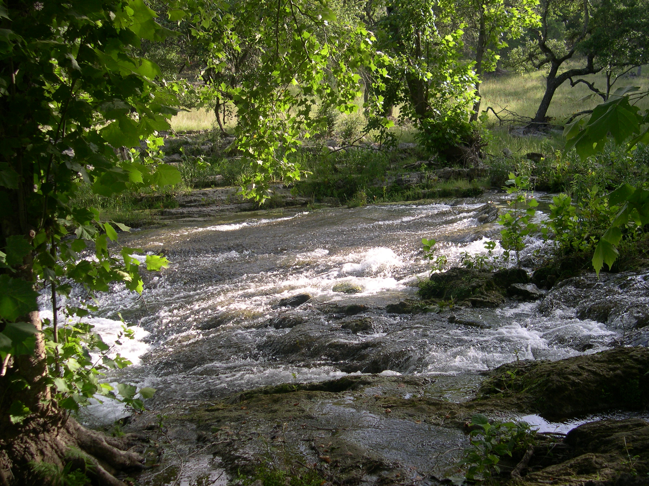 Spring Branch, in Comal County, Texas