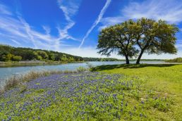 Vintage Oaks, New Braunfels, Comal County, Texas