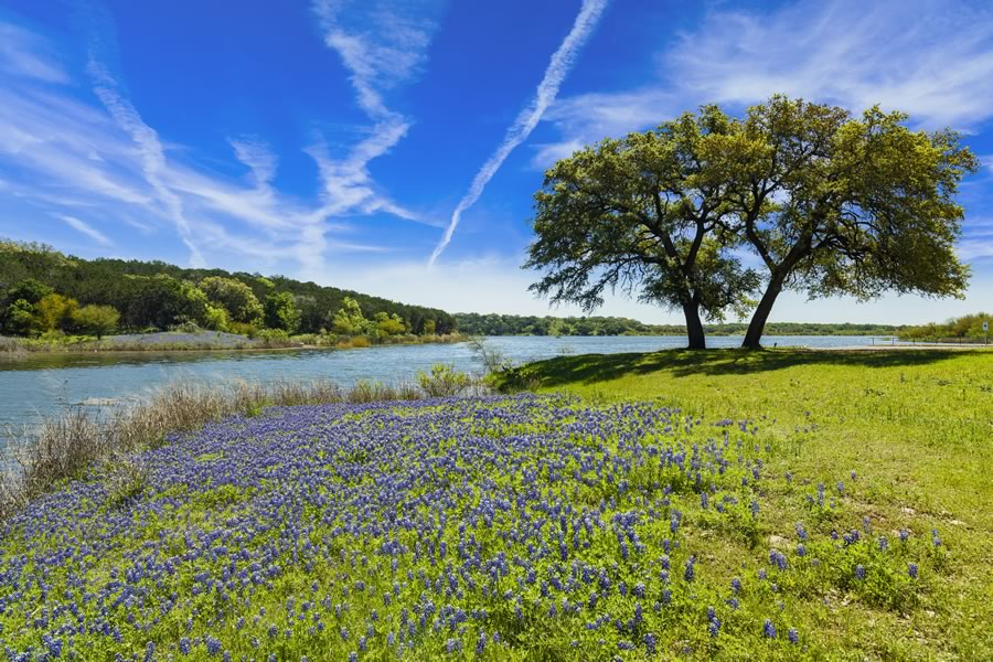 Vintage Oaks, New Braunfels, Comal County, Texas